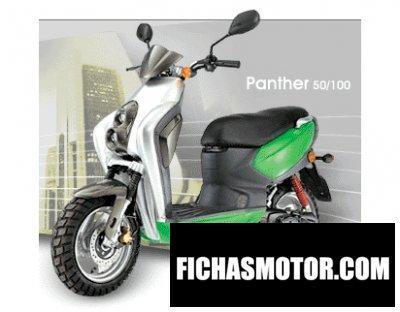 Ficha técnica Adly panther 50 2008