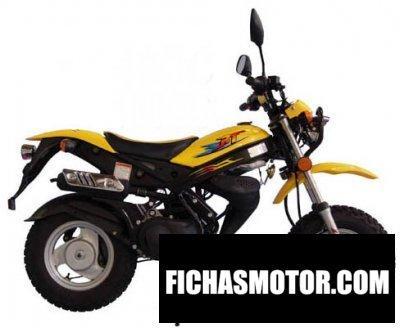 Ficha técnica Adly rt 50 roadtracer 2010