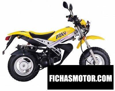 Ficha técnica Adly rt 50 roadtracer 2011