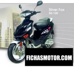 Imagen moto Adly sf-100 Silver fox 2010