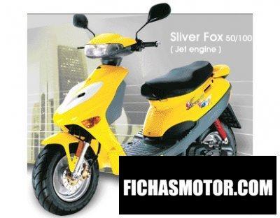 Ficha técnica Adly Silver fox 50 2008