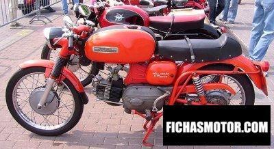 Ficha técnica Aermacchi 250 ala verde serie 1 1967