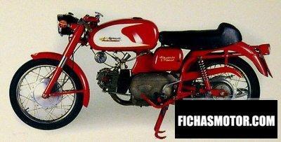 Ficha técnica Aermacchi 250 ala verde serie 2 1969