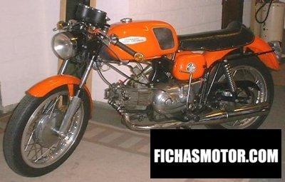 Ficha técnica Aermacchi 350 tv 1971