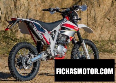 Ficha técnica AJP PR3 Enduro Pro 240 2019