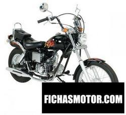 Imagen moto Ajs regal raptor dd50e-2 2008
