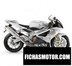 Imagen moto Aprilia rsv 1000 r 2009