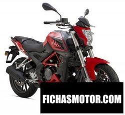 Imagen moto Benelli bn 251 2018