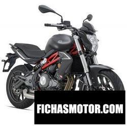 Motorcycle image Benelli BN 302 2020