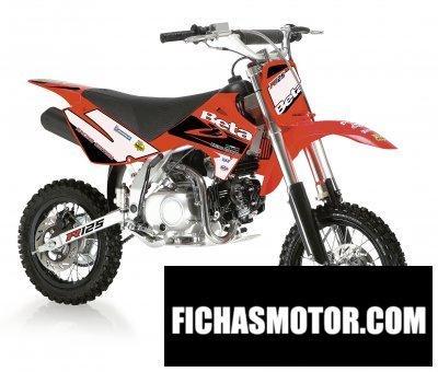 Imagen moto Beta minicross r 125 año 2008