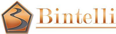 Imagen logo de Bintelli