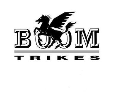 Imagen logo de Boom Trikes