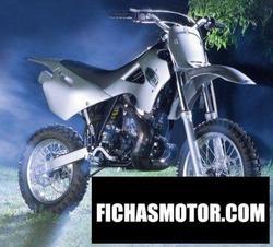 Imagen moto Borile b50 cross junior 2005