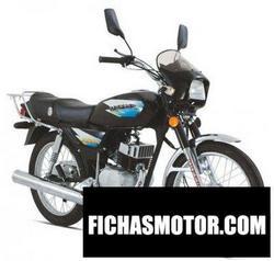 Imagen moto Dafier dfe 100 2008