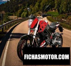 Imagen moto Dinamo Dnm-R2 250 2020
