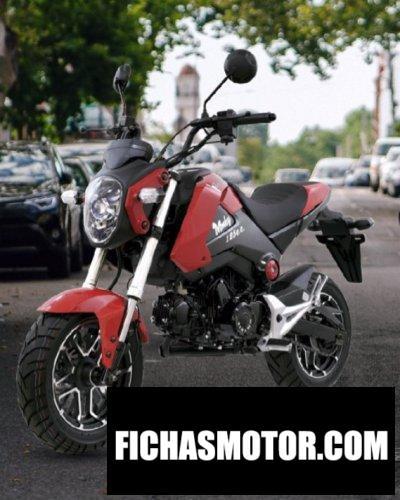 Imagen moto Dinamo Monkey 125 año 2020