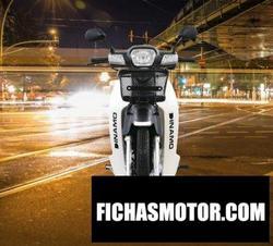 Imagen moto Dinamo Omega 2020