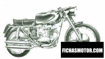 Imagen moto Ducati elite año 1964