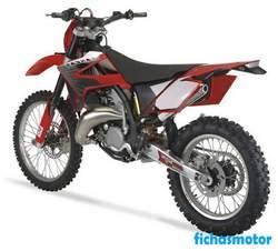 Imagen moto Gas gas ec 125 2008