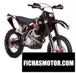 Imagen moto Gas gas ec 450 4t 2011