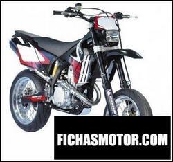Imagen moto Gas gas sm 450 supermotard 2008