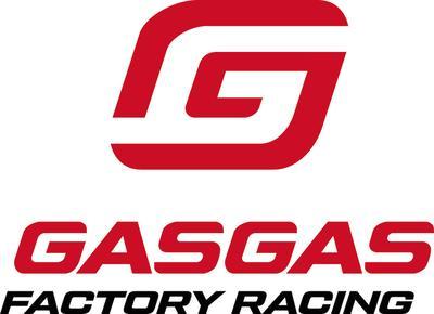 形象标志 GAS GAS