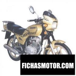 Imagen moto Geely jl125 puma 2013