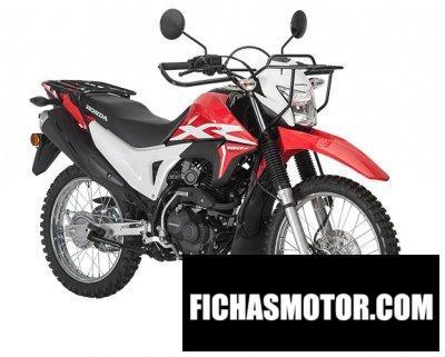 Imagen moto Honda AG-XR año 2020