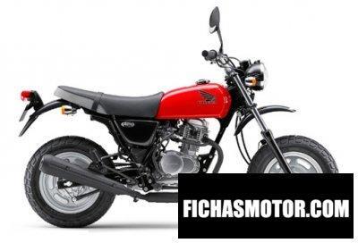 Ficha técnica Honda ape 100 2011