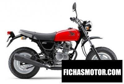Imagen moto Honda ape 100 año 2014