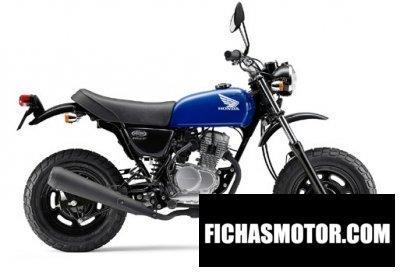 Imagen moto Honda ape 50 año 2013