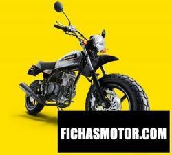 Imagen moto Honda ape 50 type d 2015