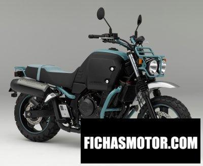 Imagen moto Honda bulldog año 2015