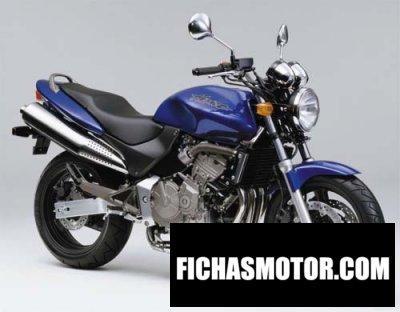 Imagen moto Honda cb 600 f hornet año 2001
