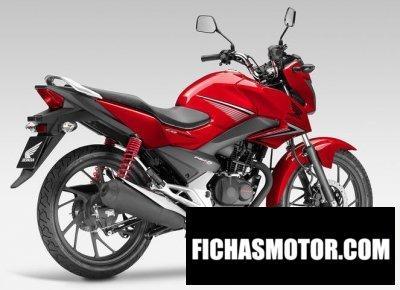 Suzuki sfv650 2018 | FICHA TÉCNICA y ESPECIFICACIONES