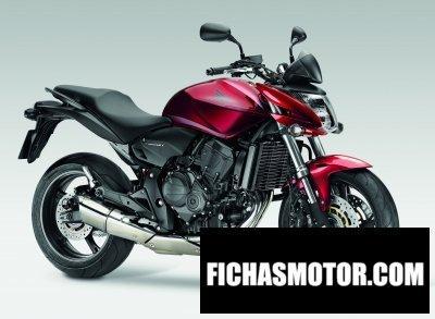 Imagen moto Honda cb600f hornet año 2009