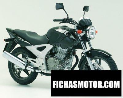 Imagen moto Honda cbf 250 año 2006