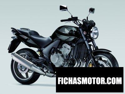 Imagen moto Honda cbf 600 año 2008
