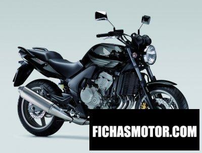 Imagen moto Honda cbf600 año 2009