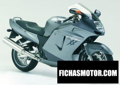 Imagen moto Honda cbr 1100 xx super blackbird año 2006