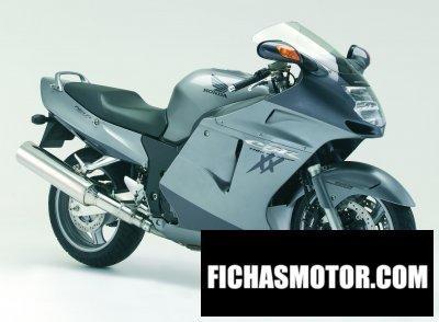 Imagen moto Honda cbr 1100 xx super blackbird año 2007