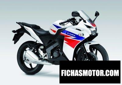 Imagen moto Honda cbr 125r año 2013