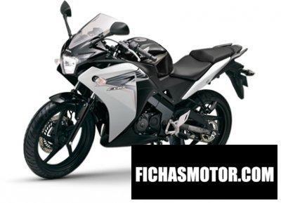 Ficha técnica Honda cbr 150r 2013