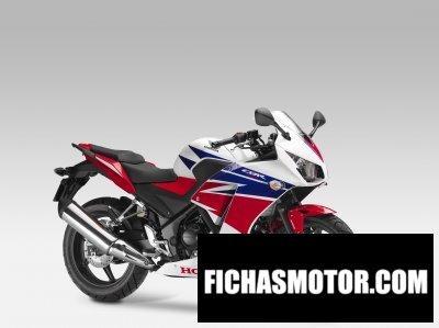 Imagen moto Honda cbr 300r año 2014