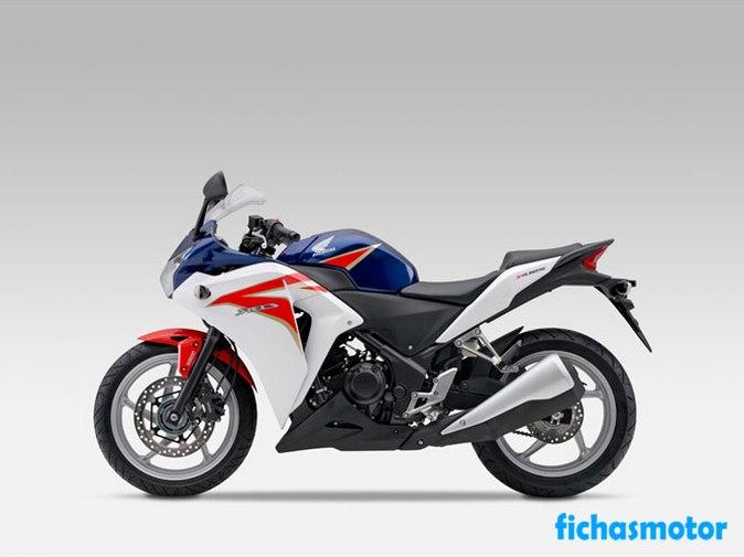 Ficha técnica Honda cbr250r 2012