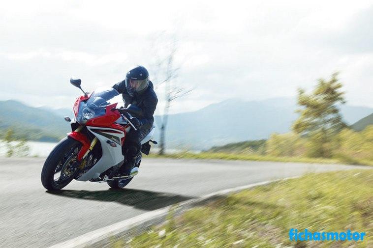 Imagen moto Honda cbr600f año 2013