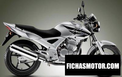 Imagen moto Honda cbx 250 twister año 2006
