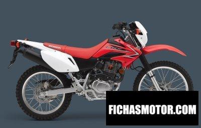 Ficha técnica Honda crf230l 2012
