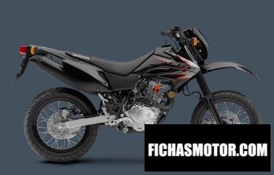Ficha técnica Honda crf230m 2012