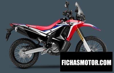 Ficha técnica Honda crf250l rally 2018